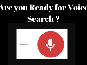 Are you Ready for Voice Search?