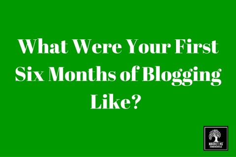 What were your first six months of blogging like