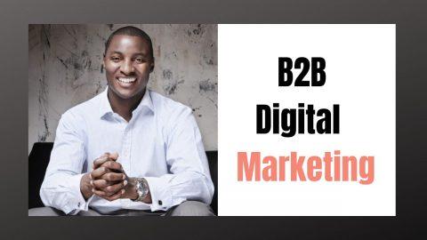What is B2B Digital Marketing